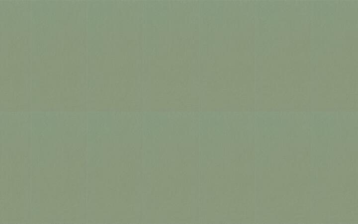Serenissima Chromagic Green Guru NAT. RTT. 60x120 cm 1074144